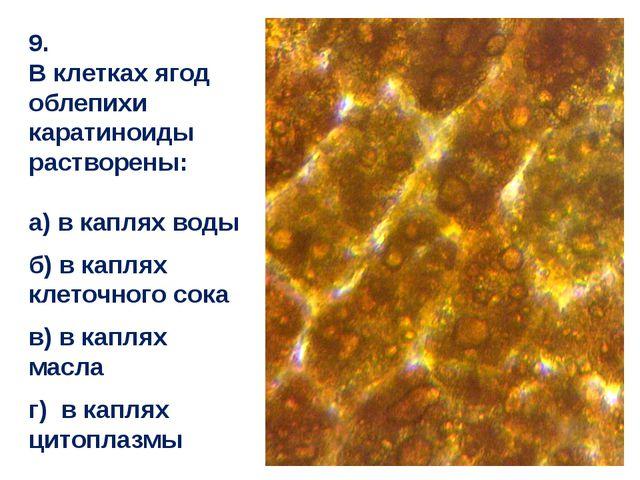 9. В клетках ягод облепихи каратиноиды растворены: а) в каплях воды б) в капл...