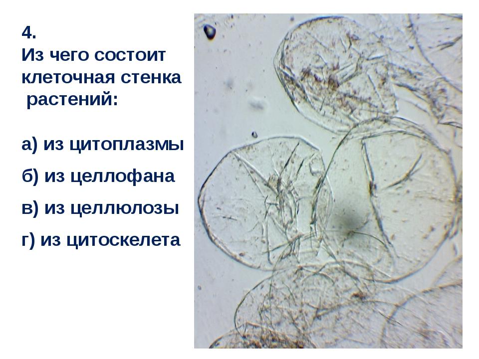 4. Из чего состоит клеточная стенка растений: а) из цитоплазмы б) из целлофан...