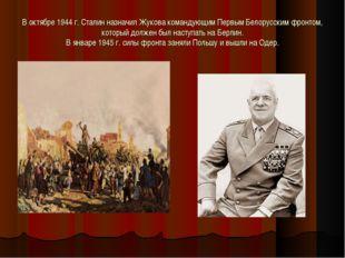 В октябре 1944 г. Сталин назначил Жукова командующим Первым Белорусским фронт