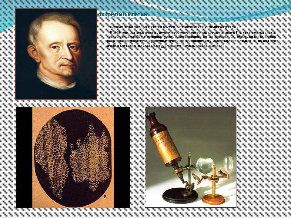 История открытия клетки Первым человеком, увидевшим клетки, был английский...