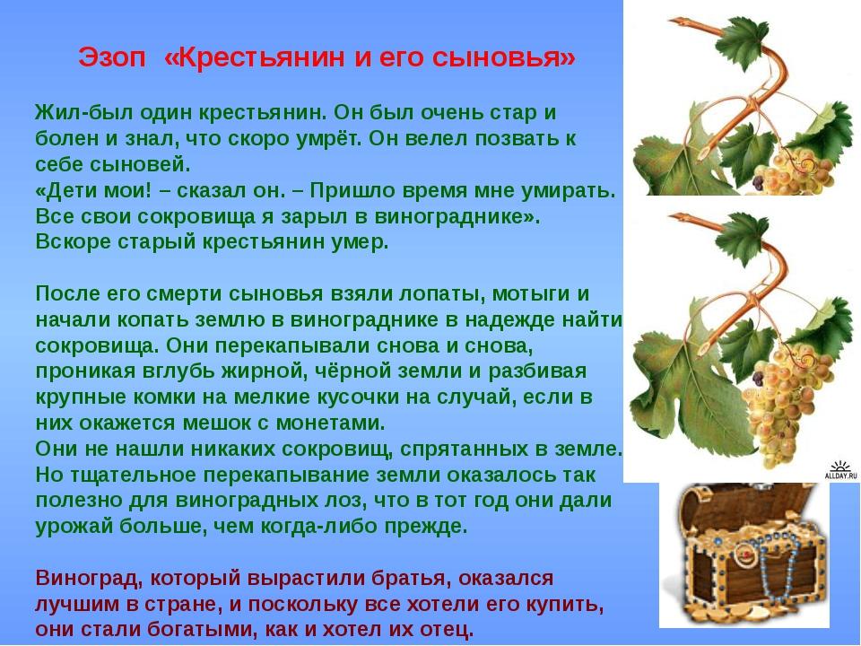 Эзоп «Крестьянин и его сыновья» Жил-был один крестьянин. Он был очень стар...
