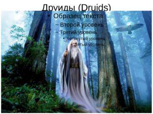 Друиды (Druids)