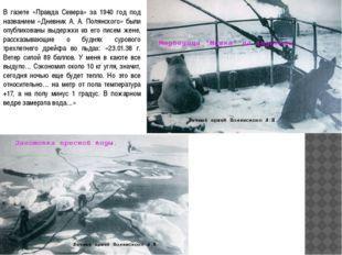 В газете «Правда Севера» за 1940 год под названием «Дневник А. А. Полянского»
