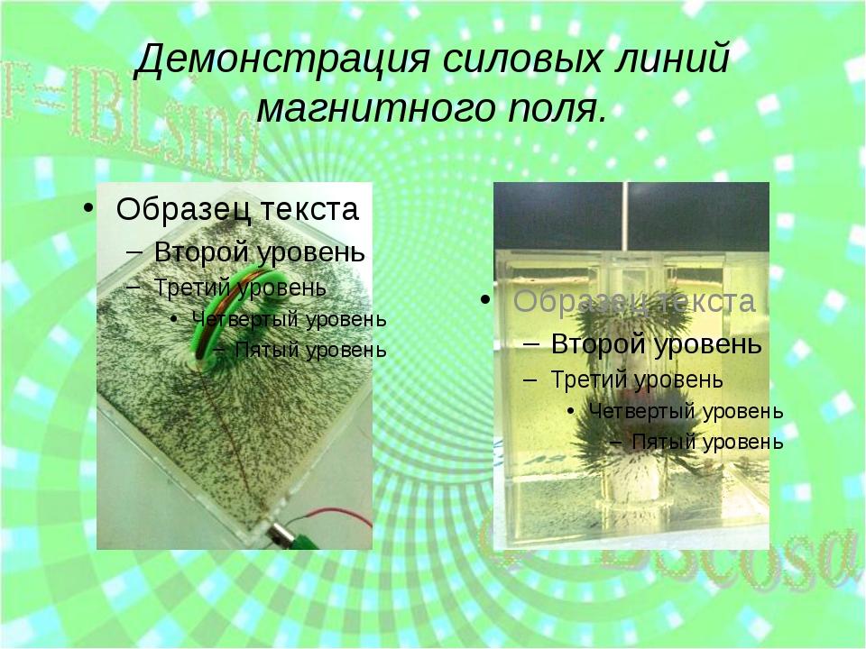 Демонстрация силовых линий магнитного поля.