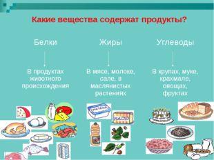 Какие вещества содержат продукты? БелкиЖирыУглеводы  В продуктах живо