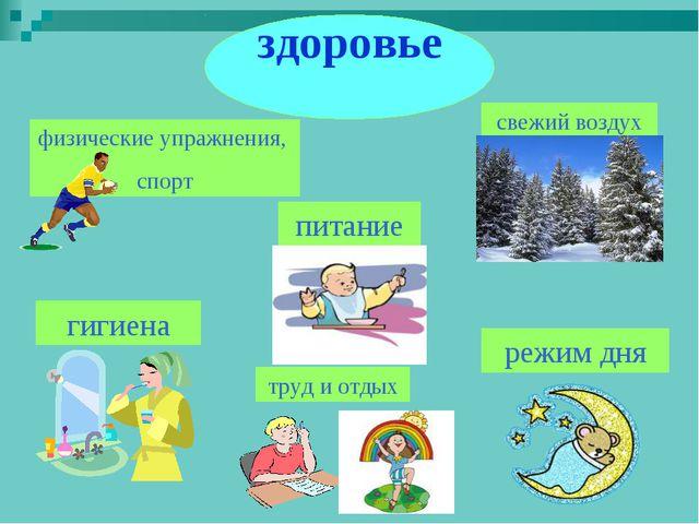 физические упражнения, спорт питание свежий воздух труд и отдых гигиена режим...