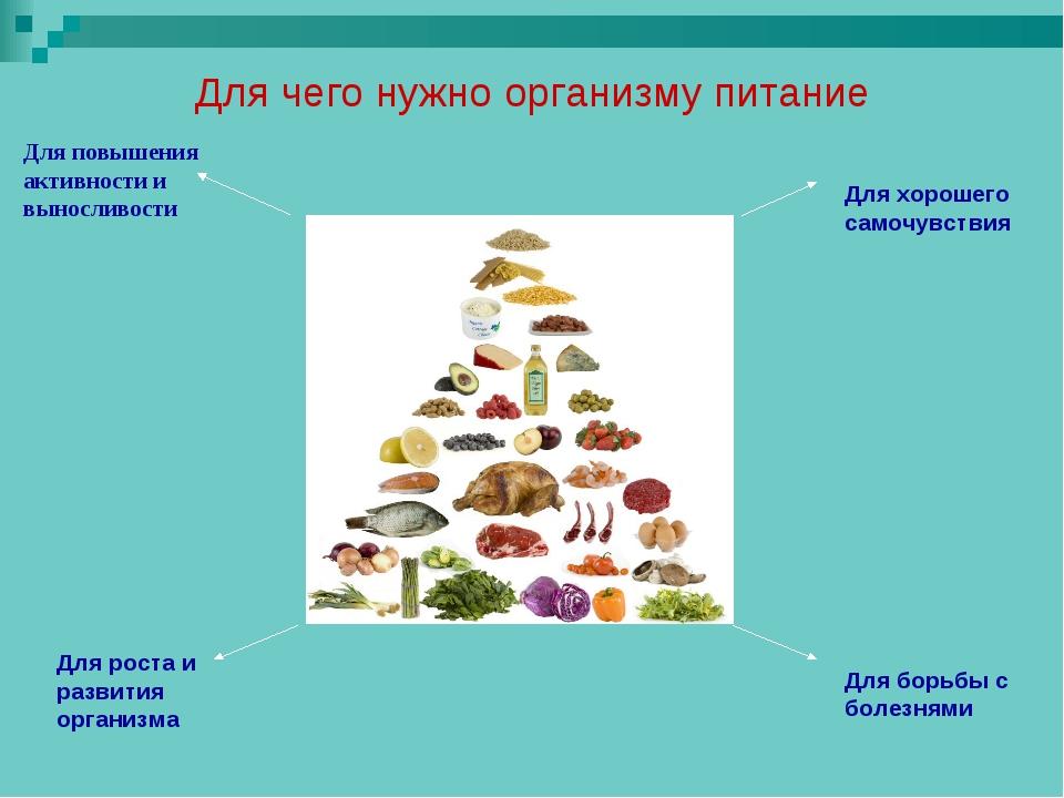 Для чего нужно организму питание Для повышения активности и выносливости Для...