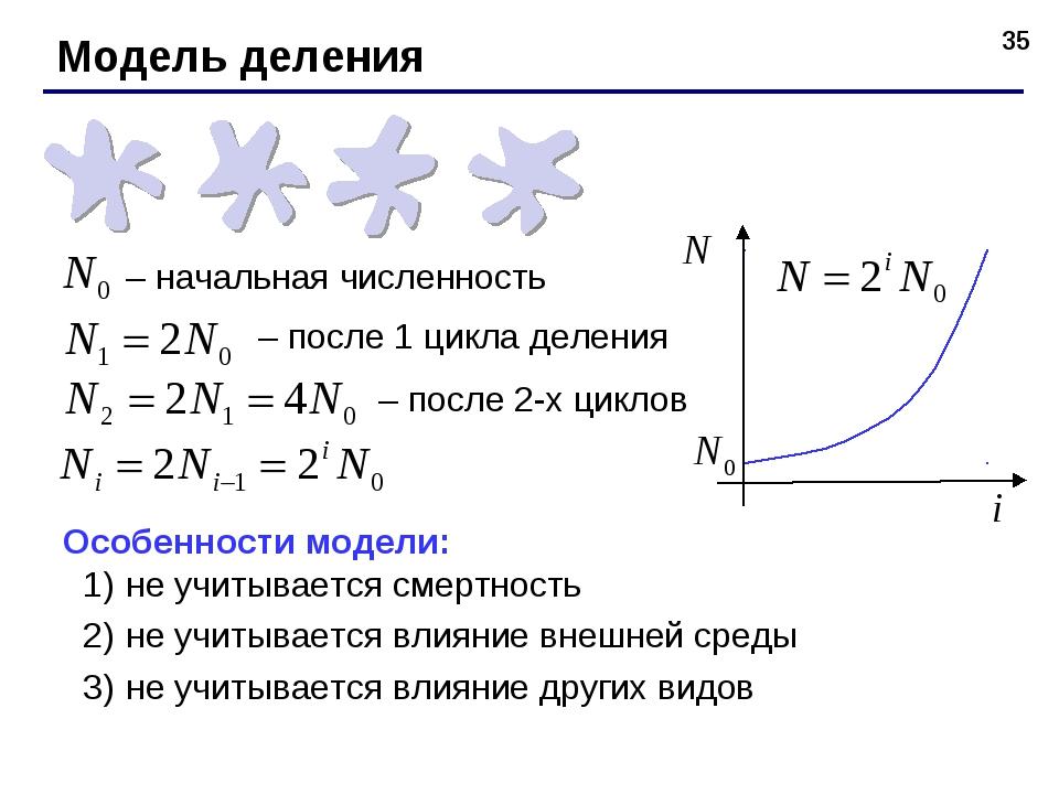 * – начальная численность – после 1 цикла деления – после 2-х циклов Особенно...