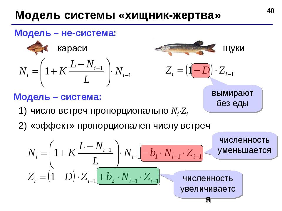 * Модель системы «хищник-жертва» Модель – не-система: Модель – система: число...