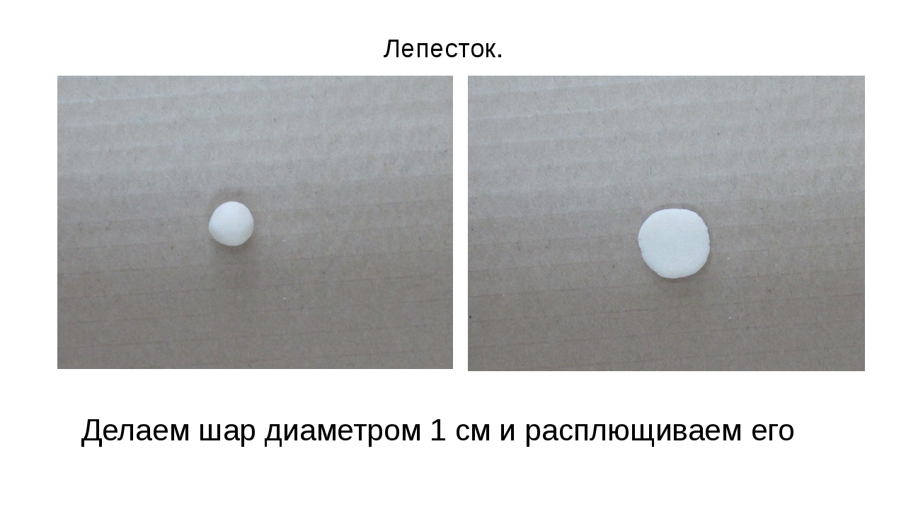 Делаем шар диаметром 1 см и расплющиваем его Лепесток.