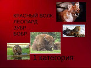 КРАСНЫЙ ВОЛК ЛЕОПАРД ЗУБР БОБР 1 категория На красных листах книги помещены