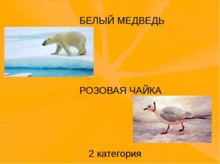 БЕЛЫЙ МЕДВЕДЬ РОЗОВАЯ ЧАЙКА 2 категория На жёлтых страницах те животные, кол