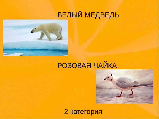 БЕЛЫЙ МЕДВЕДЬ РОЗОВАЯ ЧАЙКА 2 категория На жёлтых страницах те животные, кол...