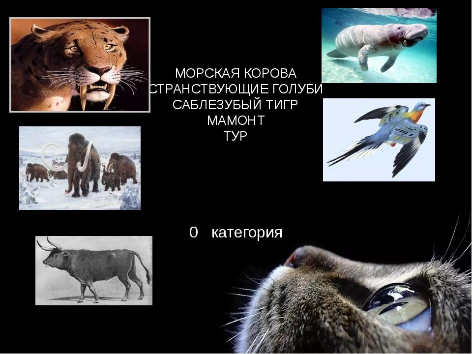 МОРСКАЯ КОРОВА СТРАНСТВУЮЩИЕ ГОЛУБИ САБЛЕЗУБЫЙ ТИГР МАМОНТ ТУР 0 категория е...