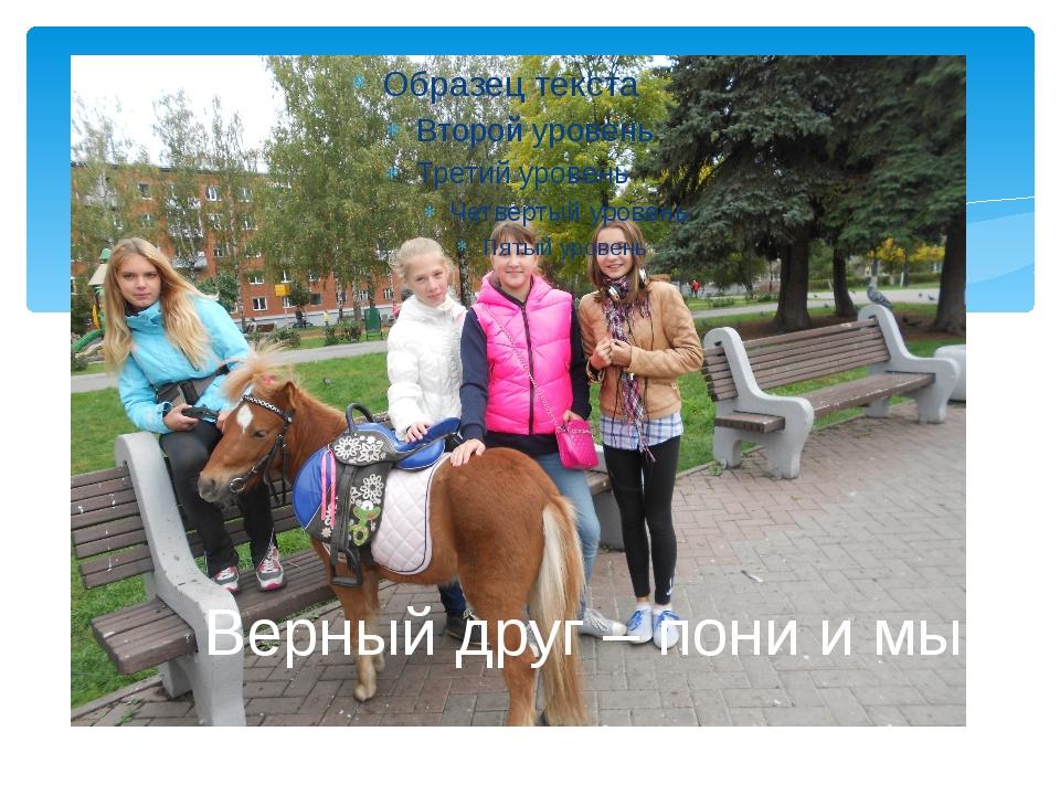 Верный друг – пони и мы