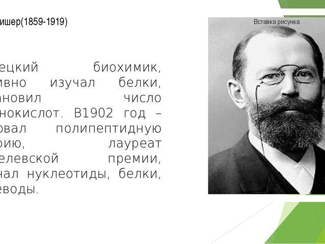 Эмиль Фишер(1859-1919) немецкий биохимик, активно изучал белки, установил чис...