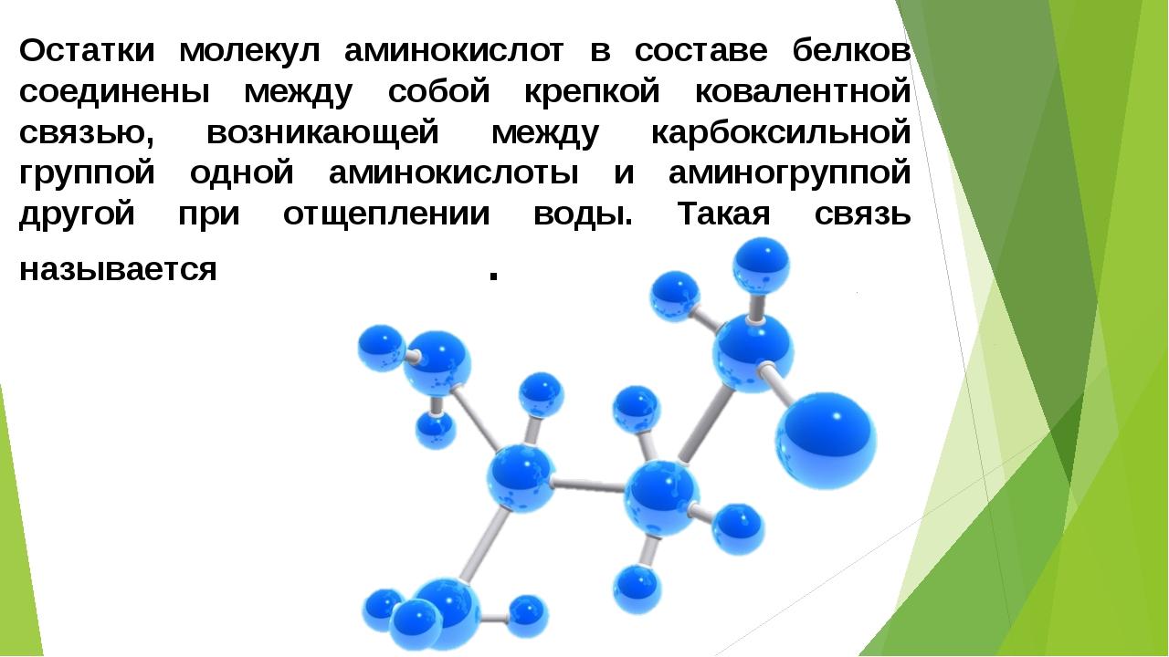 Как одна аминокислота связана с другой