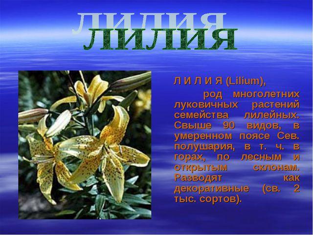 Л И Л И Я (Lilium), род многолетних луковичных растений семейства лилейных....
