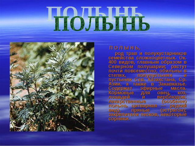 П О Л Ы Н Ь, род трав и полукустарников семейства сложноцветных. Ок. 400 вид...