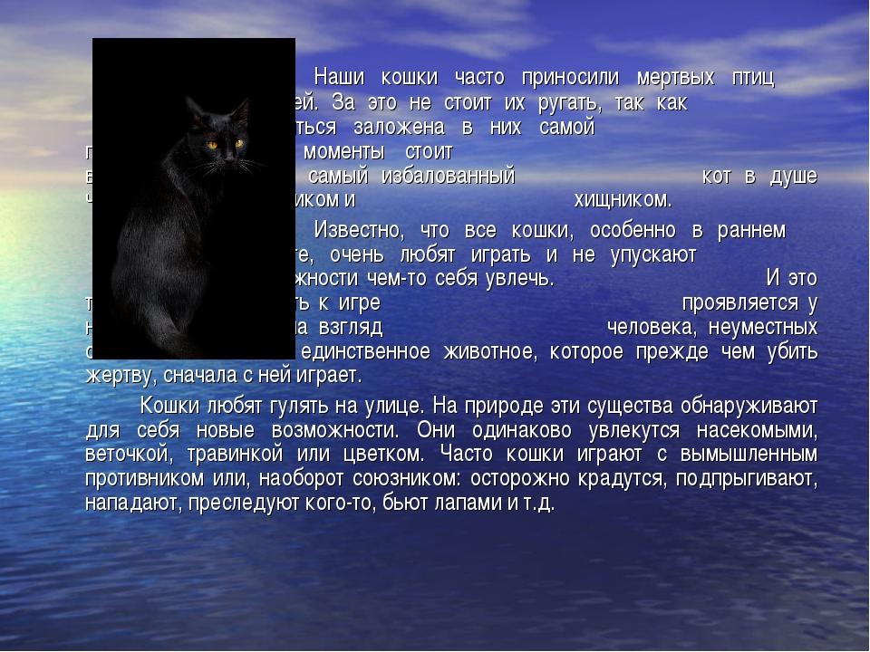 Наши кошки часто приносили мертвых птиц и мышей. За это не стоит их ру...