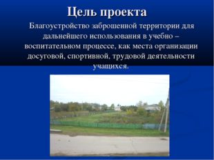 Цель проекта Благоустройство заброшенной территории для дальнейшего использов