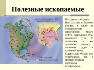 В осадочных породах Центральных и Великих равнин, а также на Миссисипской низ
