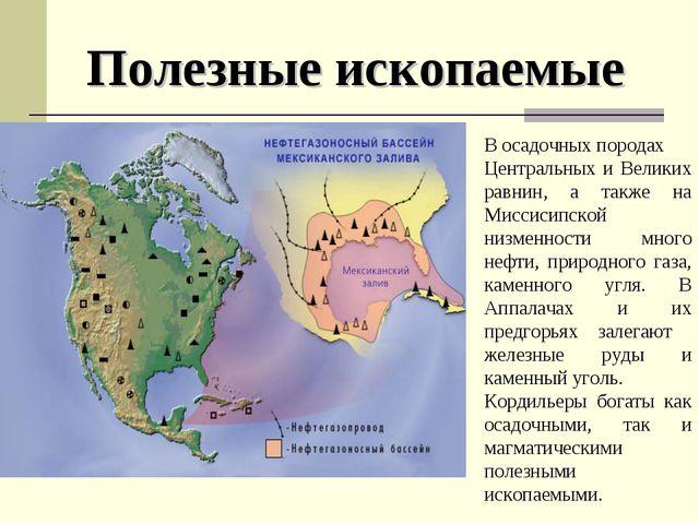 В осадочных породах Центральных и Великих равнин, а также на Миссисипской низ...