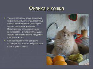 Физика и кошка Такое животное как кошка существует уже несколько тысячелетий.