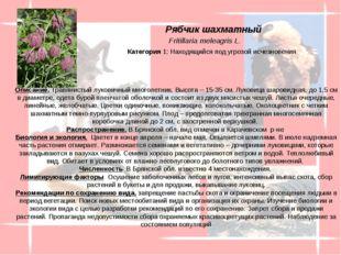 Описание. Травянистый луковичный многолетник. Высота – 15-35 см. Луковица ша