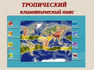 ТРОПИЧЕСКИЙ климатический пояс