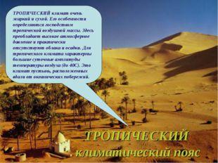 ТРОПИЧЕСКИЙ климатический пояс ТРОПИЧЕСКИЙ климат очень жаркий и сухой. Его о