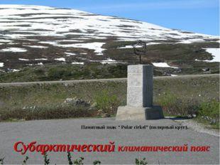 """Субарктический климатический пояс Памятный знак """" Polar cirkel"""" (полярный кру"""