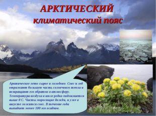 АРКТИЧЕСКИЙ климатический пояс Арктическое лето сырое и холодное. Снег и лед