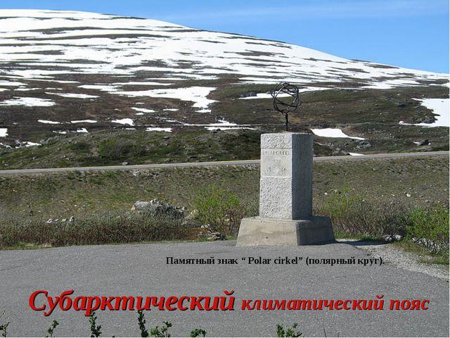 """Субарктический климатический пояс Памятный знак """" Polar cirkel"""" (полярный кру..."""