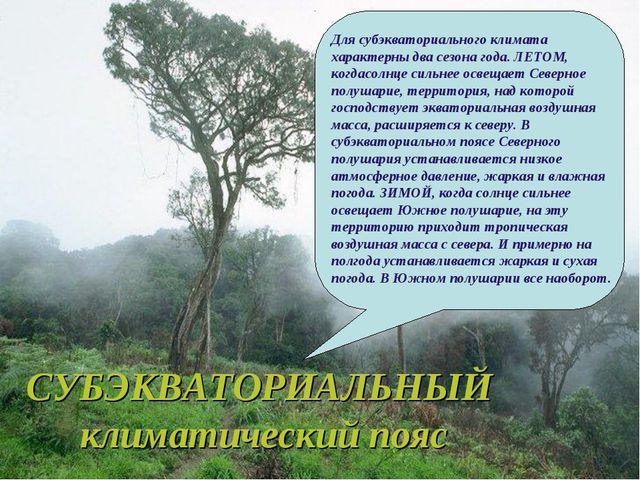 СУБЭКВАТОРИАЛЬНЫЙ климатический пояс Для субэкваториального климата характерн...