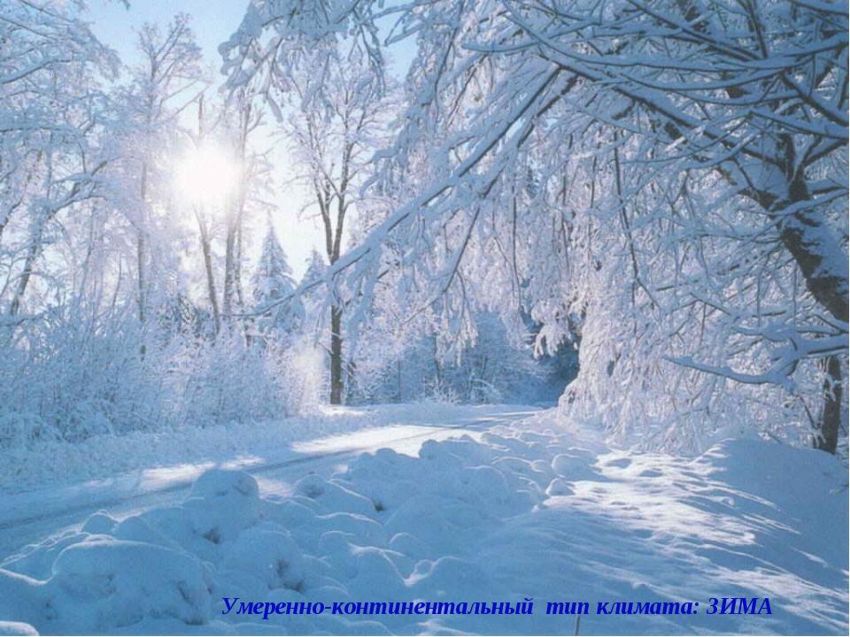 Умеренно-континентальный тип климата: ЗИМА Умеренно-континентальный тип клима...