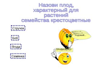 Стручок Боб Ягода Семянка