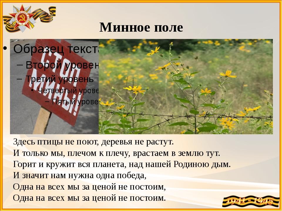 Минное поле Здесь птицы не поют, деревья не растут. И только мы, плечом к пле...