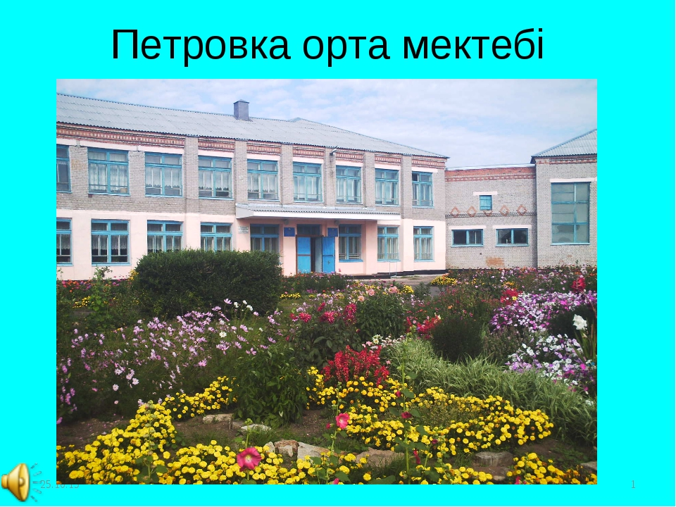 * * Петровка орта мектебі