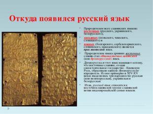 Откуда появился русский язык Прародителем всех славянских языков: восточных (