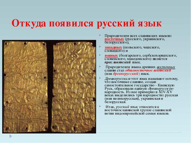 Откуда появился русский язык Прародителем всех славянских языков: восточных (...