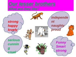 strong happy lovely Our lesser brothers What are they like? independent naug