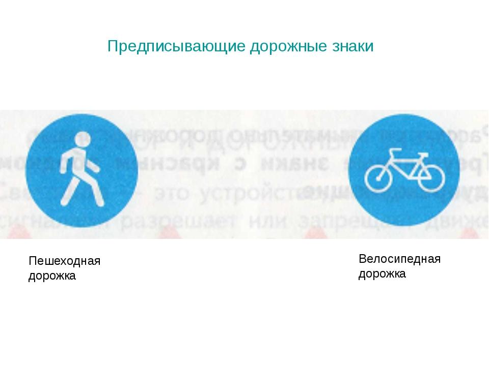 Предписывающие дорожные знаки Пешеходная дорожка Велосипедная дорожка