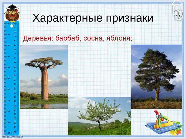 Характерные признаки Деревья: баобаб, сосна, яблоня;