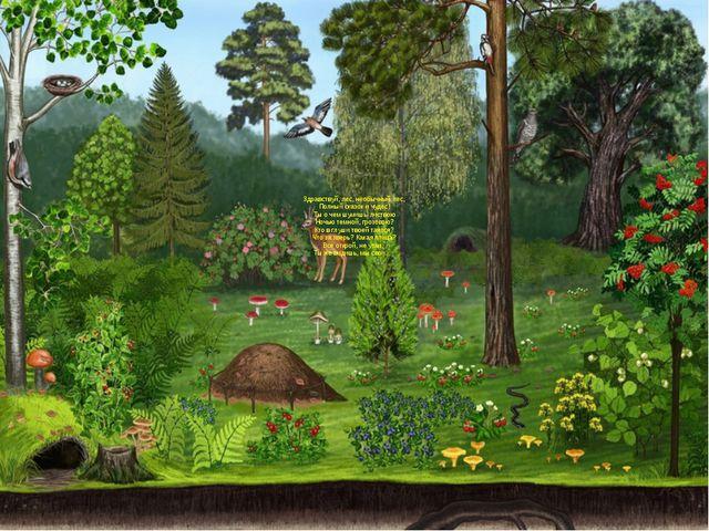 Здравствуй, лес, необычный лес, Полный сказок и чудес! Ты о чем шумишь листв...