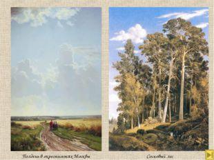 Сосновый лес Полдень в окрестностях Москвы