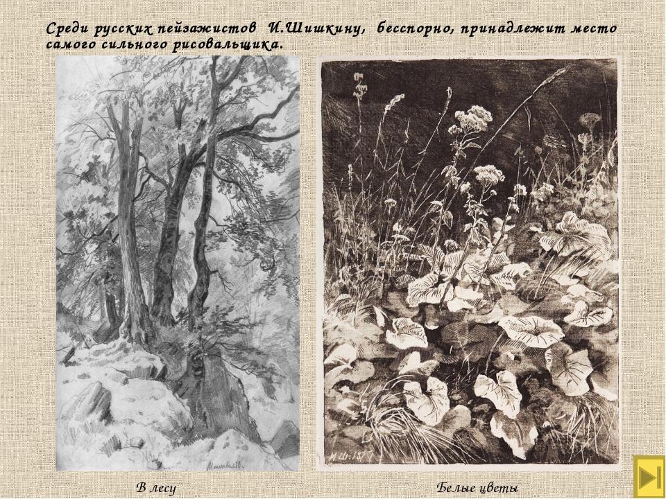 Среди русских пейзажистов И.Шишкину, бесспорно, принадлежит место самого силь...
