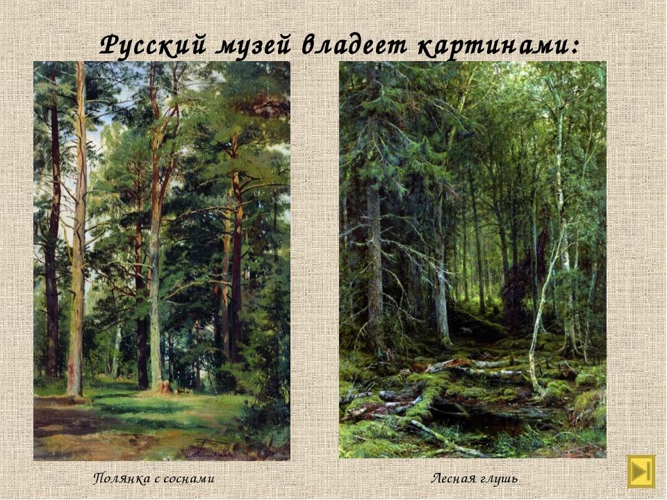 Русский музей владеет картинами: Полянка с соснами Лесная глушь