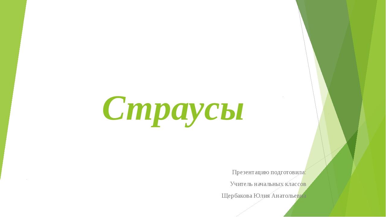 Страусы Презентацию подготовила: Учитель начальных классов Щербакова Юлия Ана...