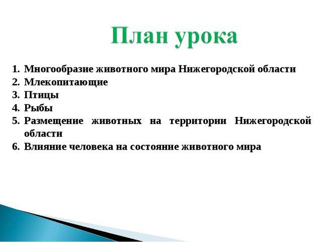 Многообразие животного мира Нижегородской области Млекопитающие Птицы Рыбы Ра...